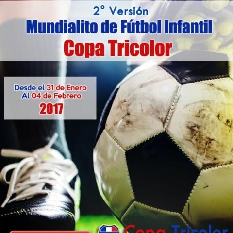 Afiche Copa